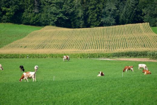 Prestations écologiques requises (PER)