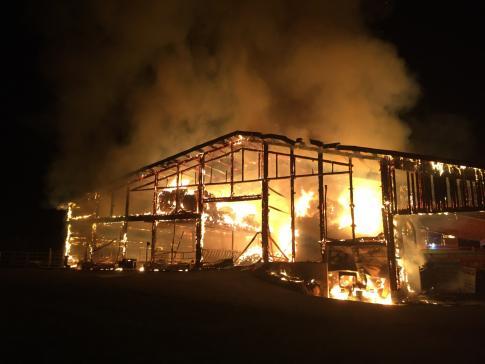 Soixante animaux périssent dans un incendie à Montévraz