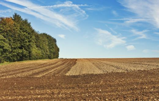 Schutz naturnaher Lebensräume