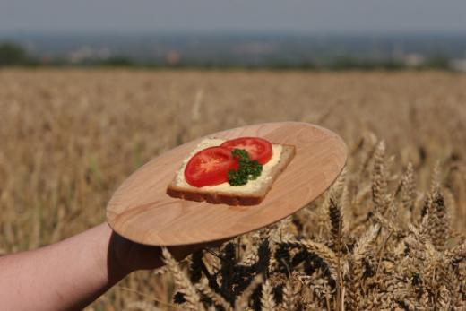 Förderung der Landwirtschaft
