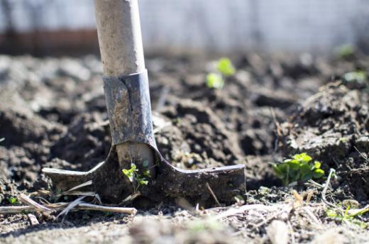 Protection du sol dans l'agriculture