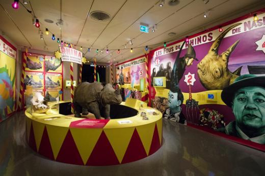 63'500 Personen besuchten die Ausstellung Rhinostar im Naturhistorischen Museum Freiburg