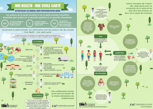 One Health : travailler ensemble pour la santé de l'homme et de l'animal