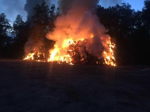 Incendie d'un tas de roseaux à Font