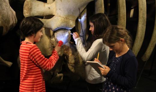 Das Festival Kultur & Schule FKB lässt die Schülerinnen und Schüler in das Kulturerbe und die bildende Kunst eintauchen