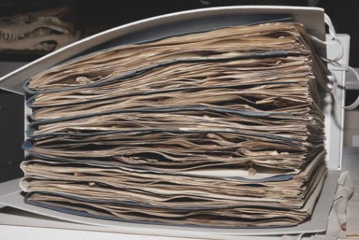 Les collections de Botanique et de Mycologie