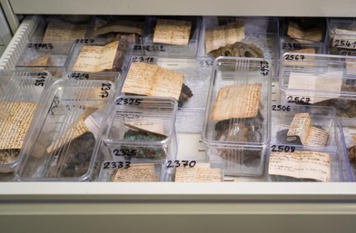 Les collections des Sciences de la Terre
