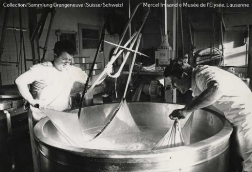 Histoire laitière de Fribourg : conférence à Grangeneuve