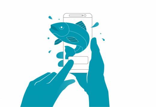 Les permis de pêche de courte durée peuvent désormais être commandés en ligne !