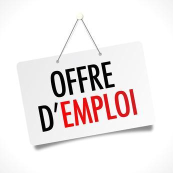 Emploi - Doyen-ne, section social (100%)