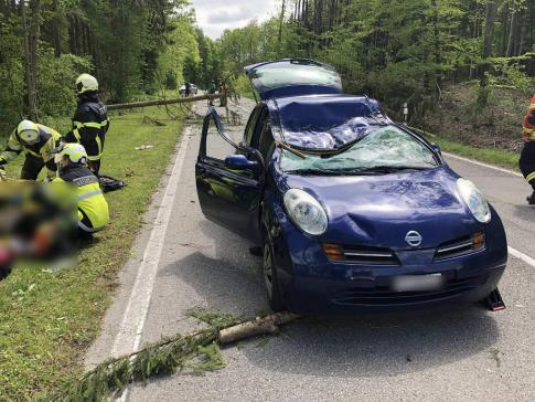 Une personne décédée et un personne grièvement blessée dans un accident de la circulation dû aux forces de la nature, à Wallenried / News nur auf Französisch