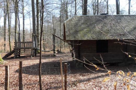 20 Jahre nach Lothar: Jubiläum 40 Jahre Waldbesitzervereinigung des Seebezirks