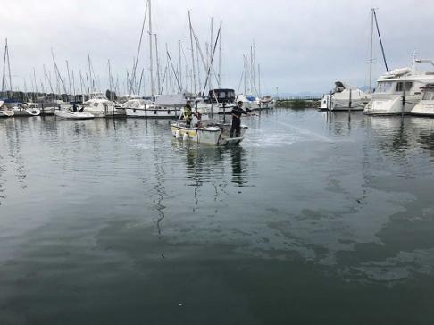 Le port de Portalban pollué au diesel / News nur auf Französisch