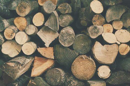 Bauholz aus der Region: aber natürlich!