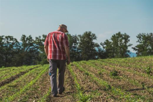 Stärkere Unterstützung von Landwirtschaftsbetrieben in Schwierigkeiten
