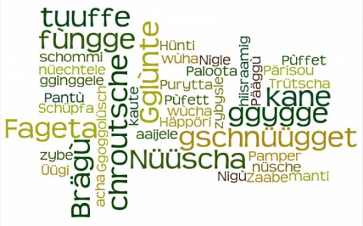 Connaître et entretenir le dialecte singinois