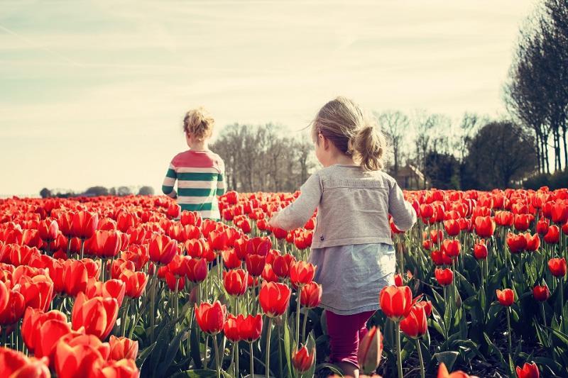 Enfants dans un champ de fleurs