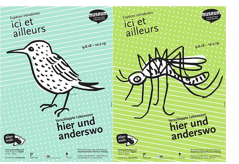 Exposition ici et ailleurs au Musée d'histoire naturelle Fribourg