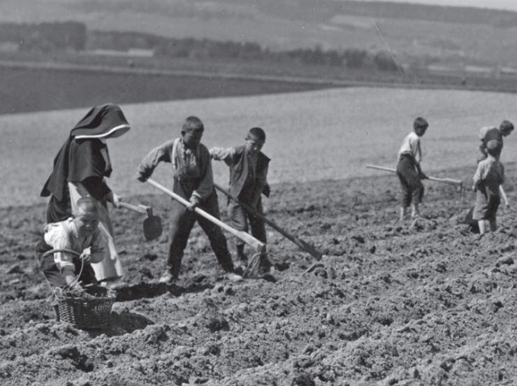 Enfants travaillant dans un champ
