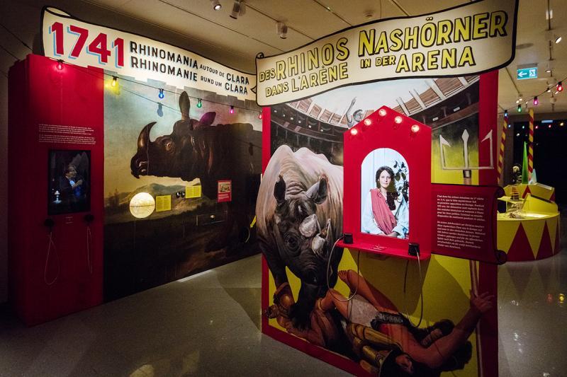 Exposition Rhinostar au Musée d'histoire naturelle de Fribourg