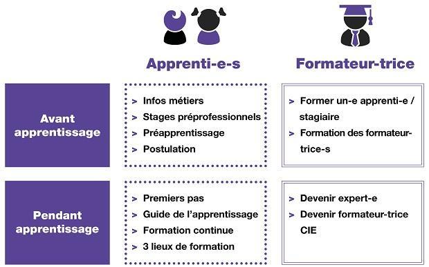 Organigramme apprentissage Etat de Fribourg