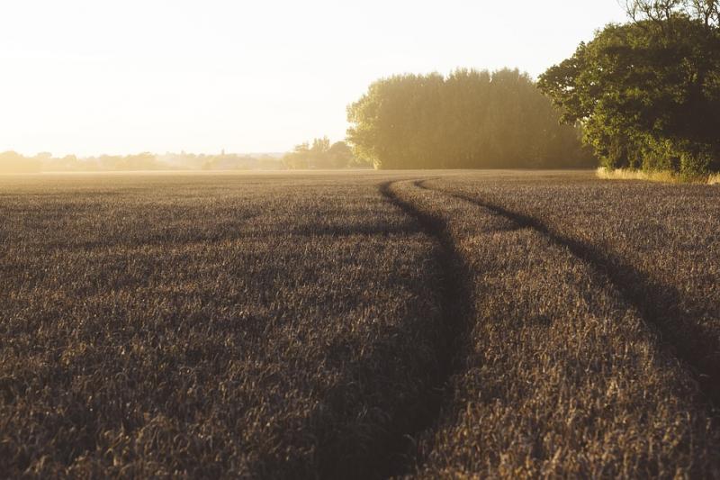 Landschaftsqualität
