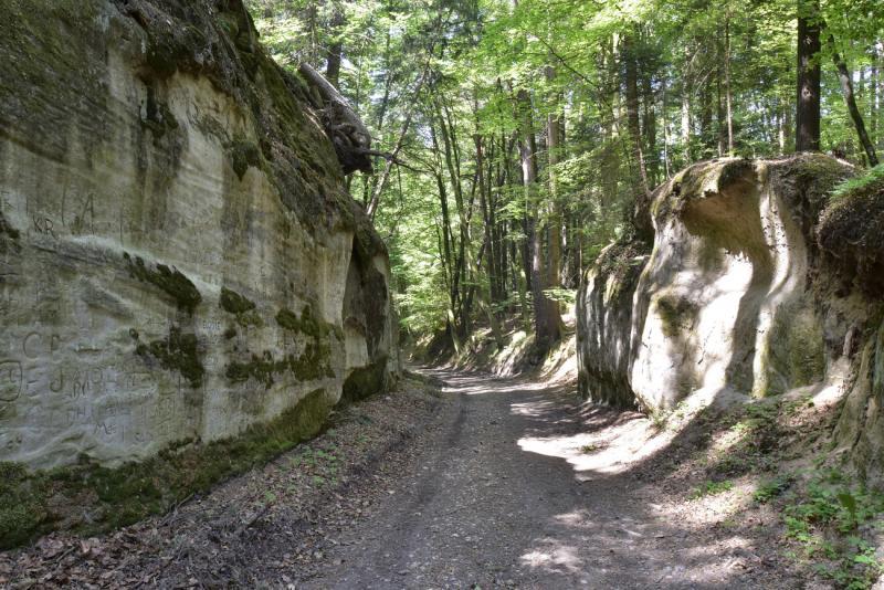 Montagny-les-Monts, Hohlweg nationaler Bedeutung des Bois de la Bruyère, im Sandstein ausgehöhlte Passage.