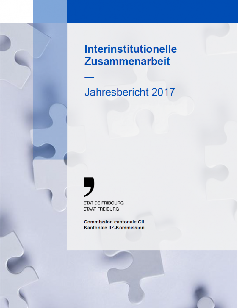 Jahresbericht IIZ 2017