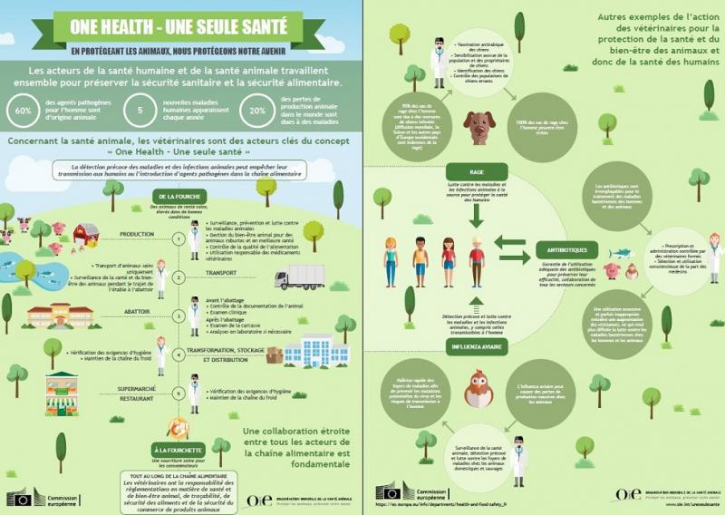 Infographique de One Health