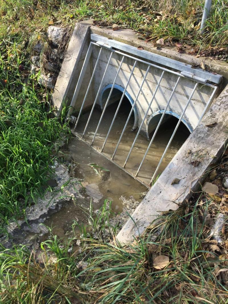Pollution d'un ruisseau à Corminboeuf