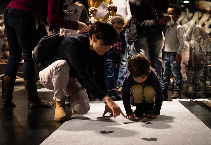 Atelier parents-enfants au MHNF