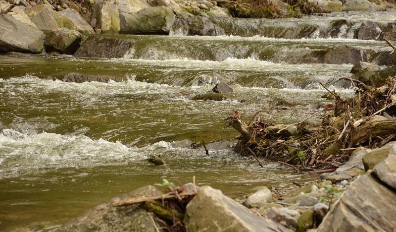 Un exemple d'aménagement favorable à la migration des poissons dans le canton de Fribourg