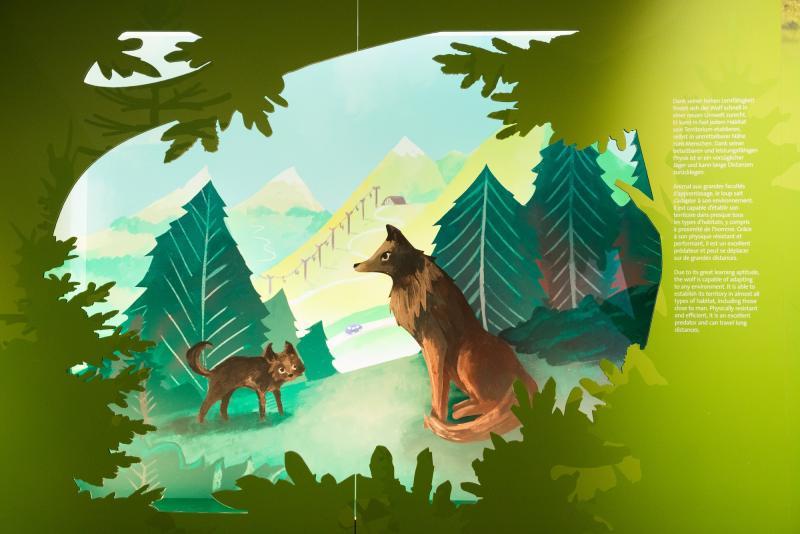 Wolf - Wieder unter uns
