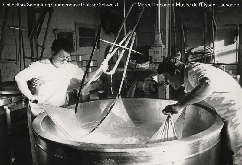 Image montrant la fabrication de Gruyère