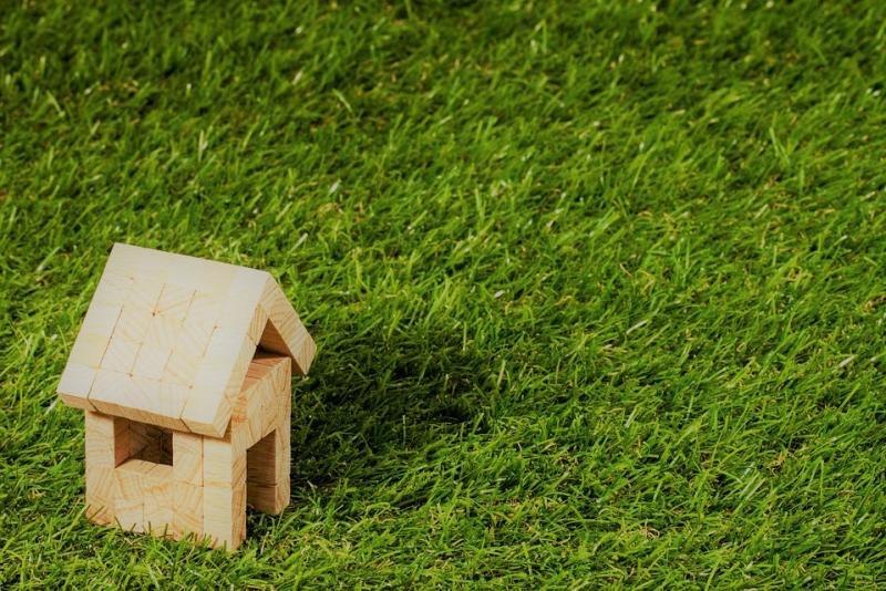 maisonnette en bois sur fond vert