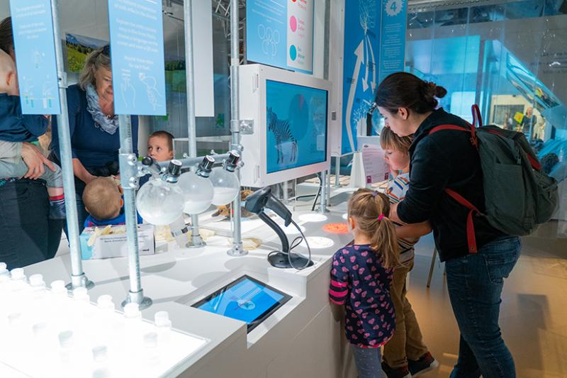 """Visiteurs dans l'expo """"Lait - Elixir maternel"""""""