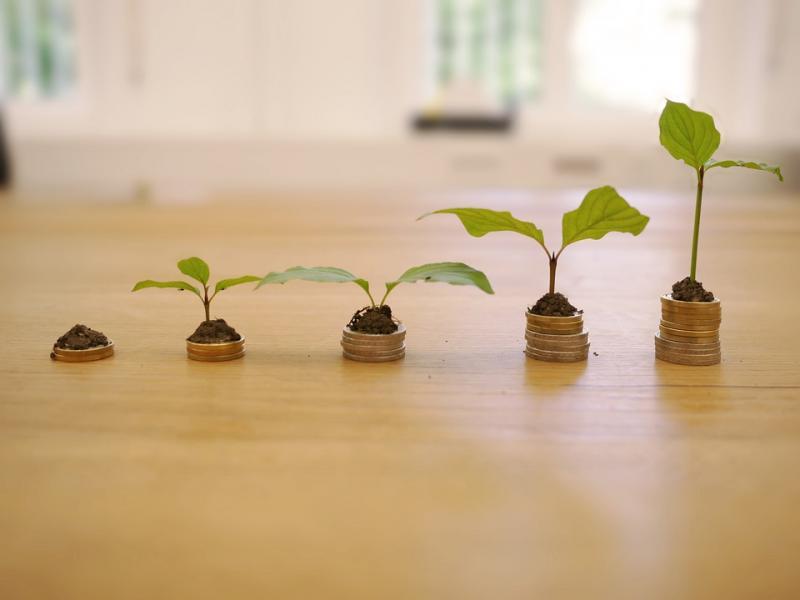 Wachsende Pflanzen auf wachsenden Stapeln von Münzen und Erde